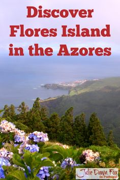 Flores, A Fabulous But Foggy Island in the Azores. This is one of the most remote islands in the Azores archipelago, part of Portugal but in the middle of the Atlantic Ocean. Lush, green and beautiful, even when visibility is limited! Click the image to find out what makes it such a special place to visit.
