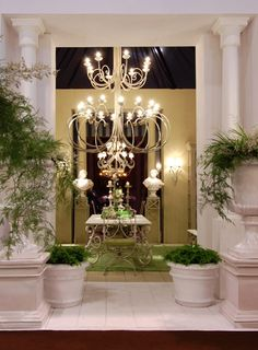 The Studio Harrods - Traditional Interiors Inspiration - Terrace
