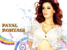 Payal Rohatgi Wallpaper http://www.indianstars.net/details.php?image_id=10682 #PayalRohatgi #PayalRohatgiwallpapers #PayalRohatgiphotographs #hotmodels