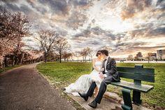 雲 構圖 光的變化 公園長椅 城市中的大自然