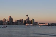 Early evening view of Auckland