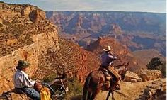 Ride mules to bottom of Grand Canyon and stay overnight!