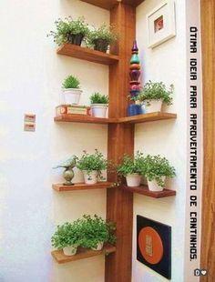 Wil je eens wat anders dan een plantje in een saaie pot? Bekijk dan hier dan 11 hele gave planten ideetjes! - Zelfmaak ideetjes