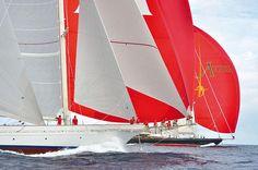 The giant sail in St Barts Bucket Regatta 2015. Photo credit to Sandra Gache #stbarts #sailing #yacht #luxury