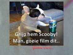 Gewoon Carl - Google+