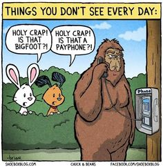 Funny pictures about Things you don't see everyday. Oh, and cool pics about Things you don't see everyday. Also, Things you don't see everyday. Facebook Messenger, Dr Hook, Finding Bigfoot, Pseudo Science, Computer Humor, Computer Lab, Tech Humor, Loch Ness Monster, Funny Cartoons