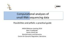 Computational analyses of small RNA sequencing data: possibilities and pitfalls   RNA-Seq Blog