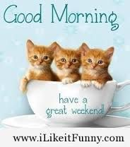 Image result for sayings for is that the weekend