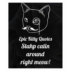 A cat + Stahp catin aroun... = Happy! Check out more here http://www.epickittyquotes.com/products/stahp-catin-around-right-meow-1?utm_campaign=social_autopilot&utm_source=pin&utm_medium=pin