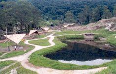 Lago formado com viveiros para reabilitação de pássaros.