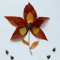 Fall crafts for kids - 5 pictures with autumn leaves - Kiddie Foodies Fall Arts And Crafts, Crafts For Kids To Make, Autumn Art, Autumn Leaves, Leaf Flowers, Paper Flowers, Thanksgiving Crafts, Holiday Crafts, Collage Nature