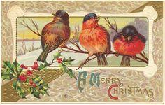 Ak Litho Weihnachten 1914 Vögel Birds Gold Landschaft beautiful Prägedruck | eBay