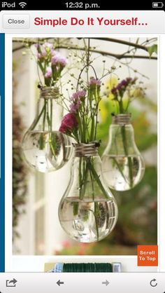 Recycle your lightbulbs and use them as flower pots.
