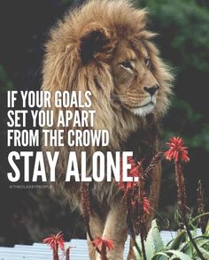 If your goals set you apart from the crowd Stay Alone