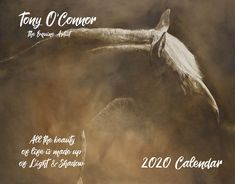 Tony O Connor 2020 Equine Art Calendar Limited Edition Custom Calendar, Art Calendar, Equine Art, Planner Pages, Light And Shadow, Life Is Good, Quotations, Fine Art Prints, Sketches