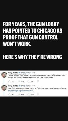 Pro Gun, Shooting Range, Gun Control, Sociology, Social Issues, History Facts, Social Studies, Chicago