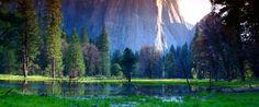 Il Centro federale per la prevenzione e il controllo delle malattie (CDC) ha avvertito Venerdì che 10.000 persone potrebbero essere state esposti a un virus mortale durante il loro soggiorno questa estate nel Yosemite National Park (California).    Almeno sei casi di sindrome antavirus polmonare (HPS= Hantavirus pulmonary syndrome ), una malattia diffusa dalla saliva o urina di animali, tra cui sono stati rilevati quelli dei   topi e altri casi potenziali sono monitorat