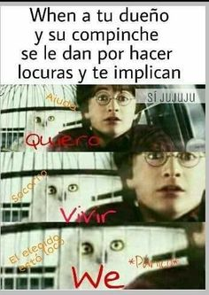 100 Harry Potter Memes so magical they& kill you laughing The post 100 Harry Potter Memes so magical they& kill you laughing appeared first on Action Manga - Anime. Harry Potter Tumblr, Harry Potter Friends, Harry Potter Actors, Always Harry Potter, Harry Potter Spells, Harry Potter Fandom, Harry Potter Universal, Harry Potter Memes, Harry Potter Hogwarts