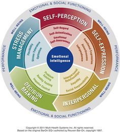 Emotional Intelligence Assessment (EQ-i 2.0) I say this is for work but I can benefit too!