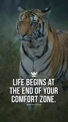 Good Thoughts Quotes, Good Life Quotes, Attitude Quotes, Wisdom Quotes, Success Quotes, Soldier Quotes Inspirational, Motivational Quotes, Fierce Quotes, Lifting Quotes