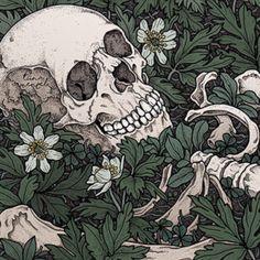 Aesthetic Art, Aesthetic Anime, Art Sketches, Art Drawings, Arte Dark Souls, Skeleton Art, Alphonse Mucha, Anatomy Art, Skull Art