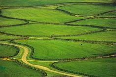 An aerial of a horse farm near Lexington, Kentucky