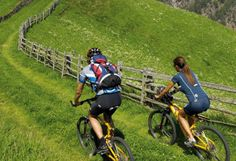 Bikeurlaub im Vinschgau.... Bicycle, Road Cycling, Bicycle Kick, Bike, Trial Bike, Bicycles