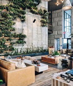 """Aidan Anderson (@thelocalproject) on Instagram: """"Polished concrete, greenery feature wall, leather couches & timber flooring ~ 1 Hotel at Brooklyn…"""""""