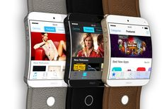 Apple iWatch - 3rd Party Developer Apps With SDK Toolkit