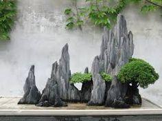 """Résultat de recherche d'images pour """"留園盆景"""""""