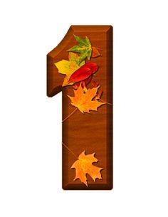 Zahl - Nummer - Number / 1 - Eins - One (Herbst / Autumn / Fall)
