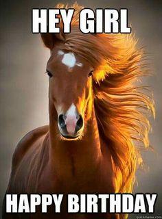 20 Happy Birthday Horse Ideas Happy Birthday Horse Happy Birthday Horses