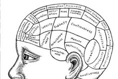 Motivation and the Brain | How to harness student motivation? New research points the way.