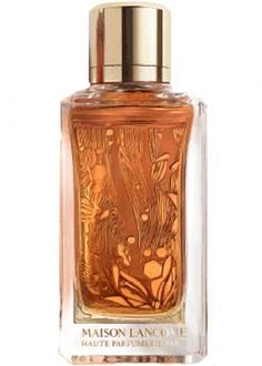 Oud Ambroisie Lancome for women and men