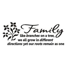 Family like branches on a tree Wall art decals vinyl love letters bedroom