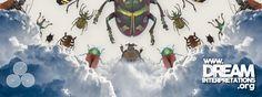 Beetle - Dream Interpretation - Dream Dictionary - Dream Symbol