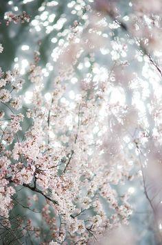 Natures sparkle