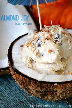 Almond Joy Ice Cream - Lady Behind The Curtain