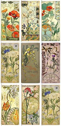 G.Riom, chromolithographs, Etudes de Fleurs series of Art Nouveau style - 1890 [640x1313]