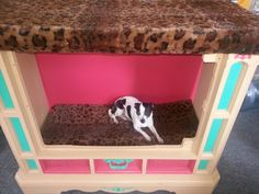 Dog bed recycled from old floor model tv