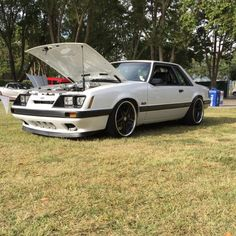 Notchback Mustang, Mercury Capri, Fox Body Mustang, Car Ford, Mustangs, Foxes, Exotic Cars, Muscle Cars, Touring