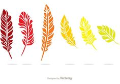 Colorful Feather Vector Pack