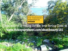 Arab Spring, Spring Cleaning, June, Projects, Plants, Beauty, Ideas, Log Projects, Blue Prints
