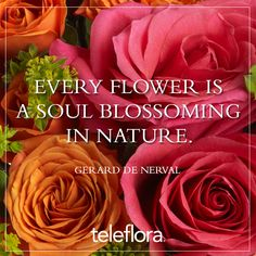 #Flower #Quote