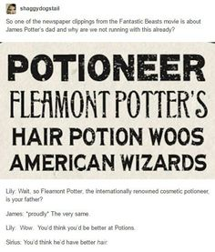 Fantastic Beasts and Where to Find Them, Fleamont Potter, James Potter, Lily Evans, Sirius Black Harry Potter Marauders, Harry Potter Jokes, Harry Potter Fandom, Harry Potter World, The Marauders, Hogwarts, Slytherin, Severus Rogue, No Muggles