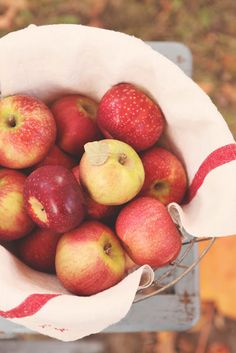 French Larkspur - apples,vintage towel...simply autumn table scape #Anthropologie #PinToWin