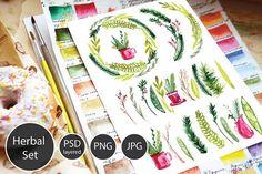Christmas Herbal watercolor set by Olesya Morokhovets on @creativemarket