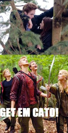 Hunger games and twilight  Funny. I agree get 'em Cato!