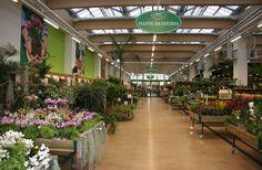 La serra calda del garden center di Arese, dedicata alle piante da interni