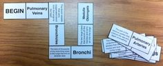 Respiratory system body dominoes game test review vocab words 5 6 7 8th jr high - Mister Science - TeachersPayTeachers.com